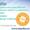 Профессиональная разработка сайтов Alex-Stydio #1358391