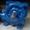 Мотор-редуктор МЧ-100-71-52-У3 продам #1492278
