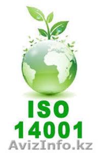 Сертификация ISO/ИСО 9001, ISO/ИСО 14001  для участия в тендерах - Изображение #2, Объявление #1055767