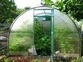 Теплицы для дачи и огородов оптом и врозницу
