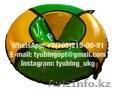 Тюбинг санки ватрушка тюбинги надувные сани стьюб стюб - Изображение #5, Объявление #1629465