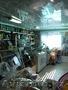 Продается действующий бизнес - продуктовый магазин в п. Красина - Изображение #3, Объявление #1632328